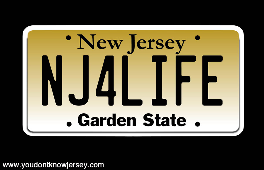 NEW JERSEY PLATE- OUTLINE