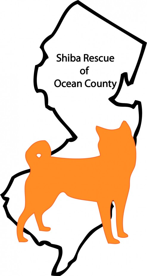 shiba rescue of ocean county
