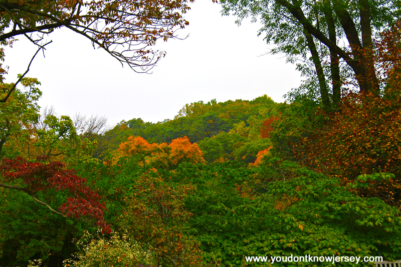 Early Autumn At The New Jersey Botanical Gardens Photo Essay Part I You Don 39 T Know Jersey