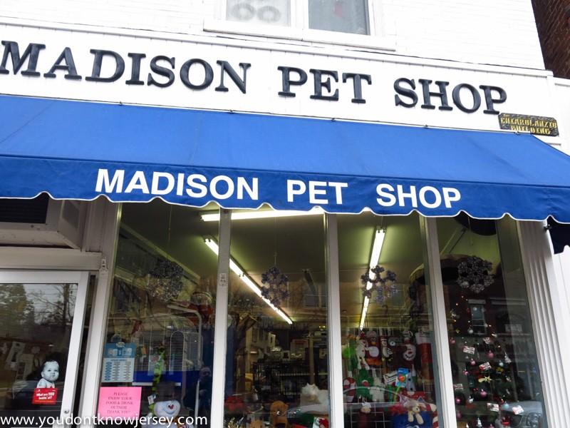 MadisonShopping-16