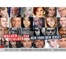 Walker-Stalker-2014-Featured-Pic_SFW