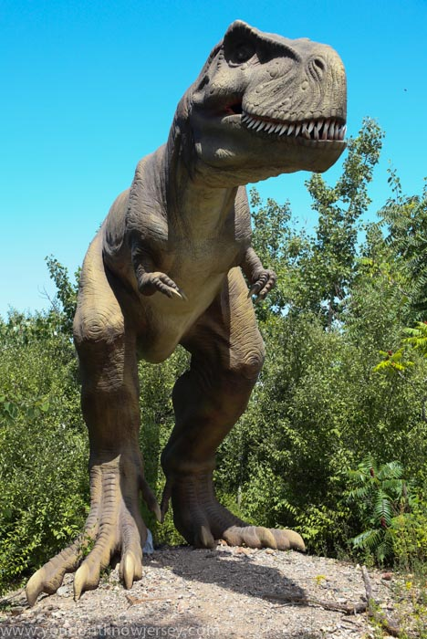 A Trip To Field Station: Dinosaurs in Secaucus | You Don't