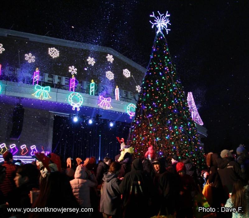 tree_lighting1_SFW
