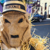The Scarecrow Stroll of Cranford – Photo Essay